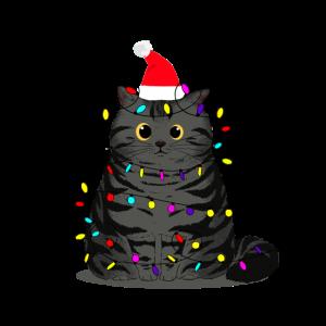 Tollpatschige Katze Weihnachten