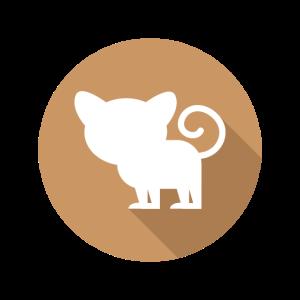 Koboldmaki Affe Primat Südostasien Grafik