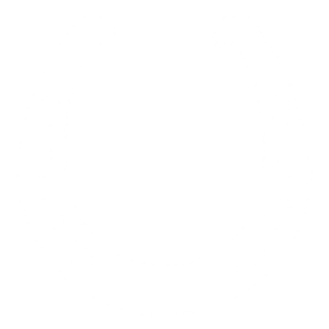 Hufeisen Pferdeshirt