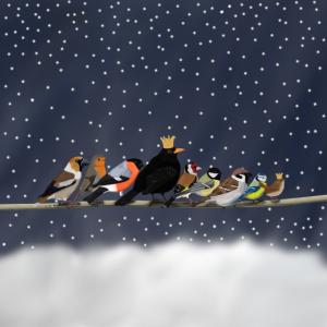 Vögel im Schnee Krone Mund-Nasen-Maske Weihnachten