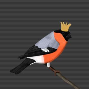 Gimpel Krone Vogel Mund-Nasen-Maske Grau Streifen