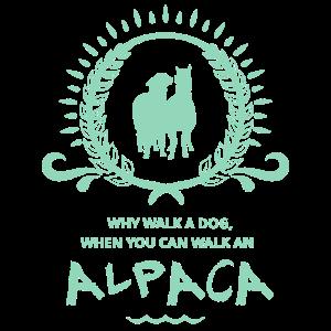 Why walk a dog, when you can walk an Aplaca - blau