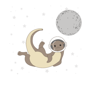 Where Do Otters Come From? Otter Space Otter Fans