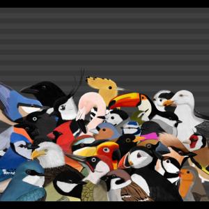 Viele Vögel Vogelmotiv Mund-Nasen-Maske Grau