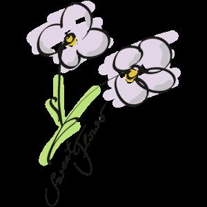 Sweet Flower Blume Lineart