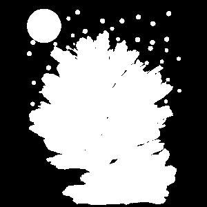 neblige Nacht bei Mondschein am Sternenhimmel