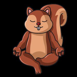 Eichhörnchen im Schneidersitz Yoga Mandala Spiritu