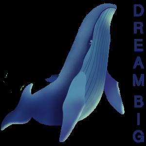 Blauwal Dream Big