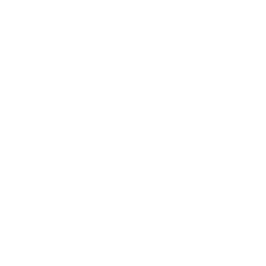 BERUF OPTIMIST