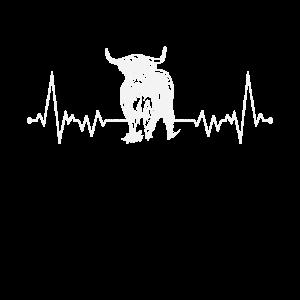 Schottisches Hochlandrind Herzschlag Rind Landwirt