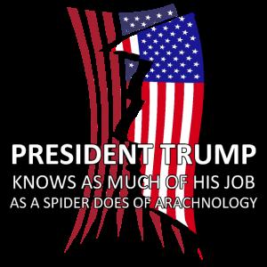 Spider Trump President Trump Torn USA Flag Trump