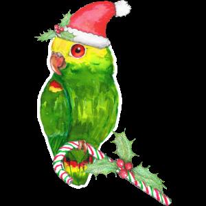 Amazonas Papagei Weihnachtsstil