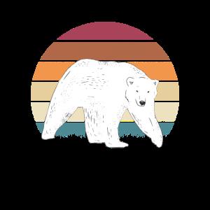 Eisbär Motiv Eisbären