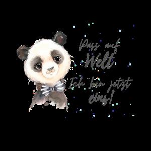 Panda 1jährige erster Geburtstag
