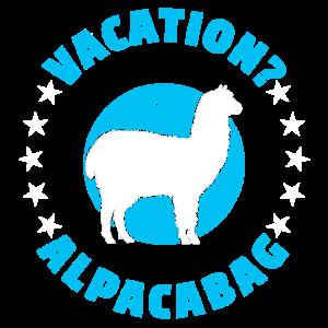 Alpaka Alpakas Llama
