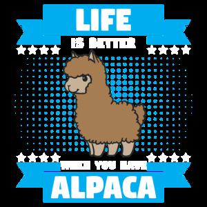 Lama Alpakas Llama