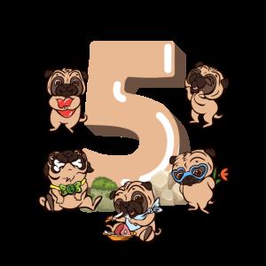 Geburtstag 5 Jahre