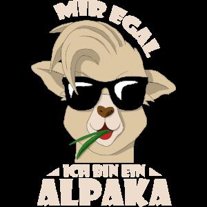 Ich bin ein Alpaka