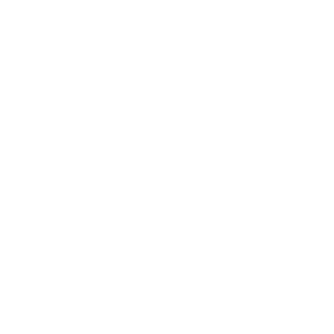 Fuchs Füchse Polygon