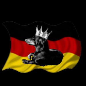 Deutscher Dackel