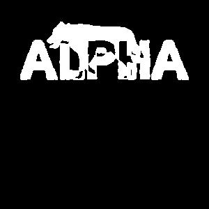 Alpha Wolf   Alphatier Wölfe Wolfsrudel Raubtier