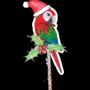 Ein grüner Ara, der für Weihnachten bereit ist