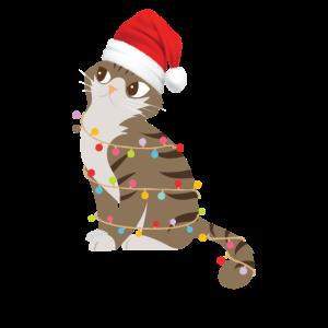 Lustige Katze mit Weihnachtsmütze und Lichterkette