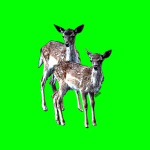 POPIIZERO - THE BAMBIS GREEN