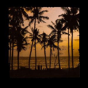 Strand Sonnenuntergang Palmen