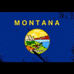 Montana USA - Vintage Flagge