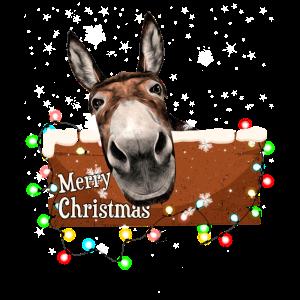 Frohe Weihnachten Esel