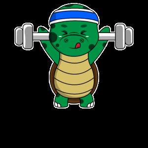 Sportliches Fitnessstudio Lifting Schildkröte