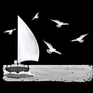 Segelschiff, Möwen