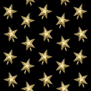 Sterne Weihnachtsstern Weihnachten Geschenk