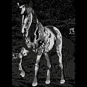 Reiten - Reiter - Reitschule - Schönes Pferd