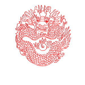 Japanisches Tatoo Drache Geschenk w