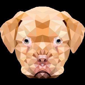 Hund Polygon Hundekopf