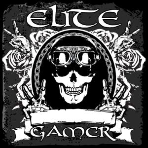 17 elite gamer