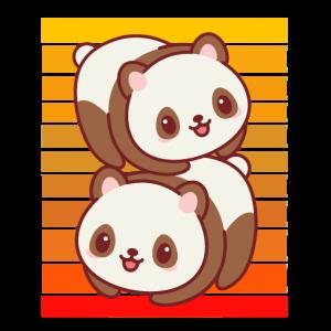 Pandas Sonnenuntergang