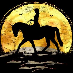 Sonne Reiten - Reiter - Reitschule - Pferd - Ross