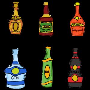Whiskey Rum Tequila Gin Party Abfeiern Vorglühen