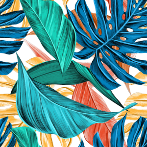Blätter Natur Pflanzen kunst bunt colors design