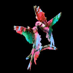 Vogel, Zeichnung, Malerei, papagei,paar, maske