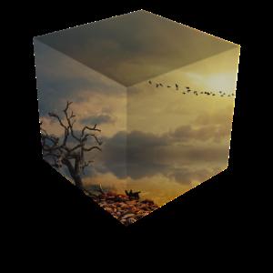 Natur Würfel / Geschenk
