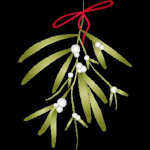 Weihnachtsbrauch - Mistelzweig mit roter Schleife