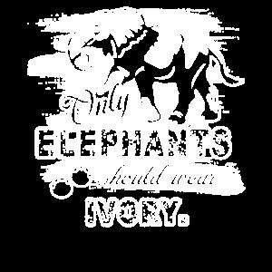 Nur Elefanten Elefanten tragen Elfenbein