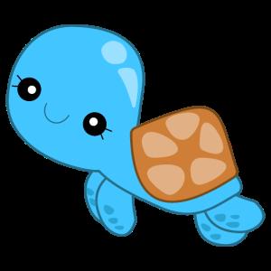 Niedliche Schildkröte, süße Baby Tiere
