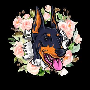 Dobermann Hundeschule Geschenk