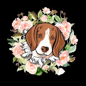 Süsser Beagle Hundesport Geschenk