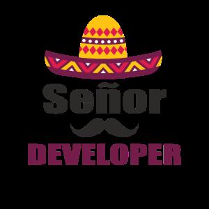 Senor Developer - senior Developer Mexico style